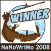 nano_08_winner_viking_100x100
