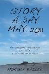 SADM 2011 cover small