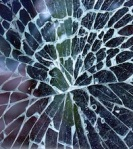 07 cracked glass 48439