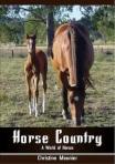 2. horsecountry