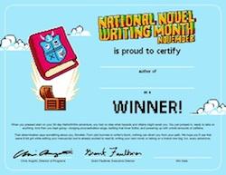2013_winner_certificate full blog