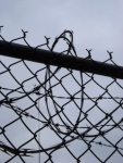 3 barbed wire 188333