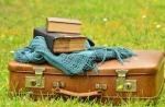 1g-luggage-1482697_640